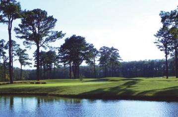 The Pines ElizabethCity